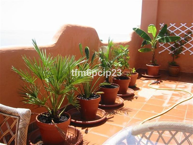 Apartment in Casares Playa R38446 13
