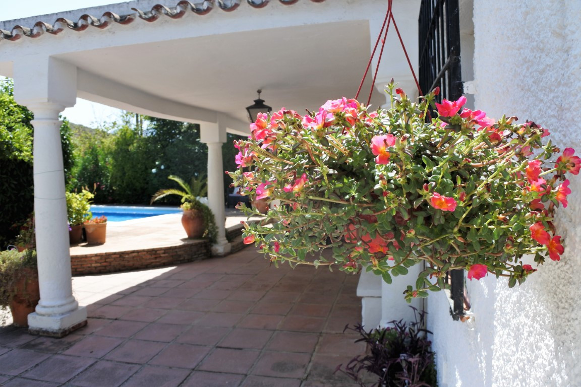 House in Alhaurín el Grande R17944 13