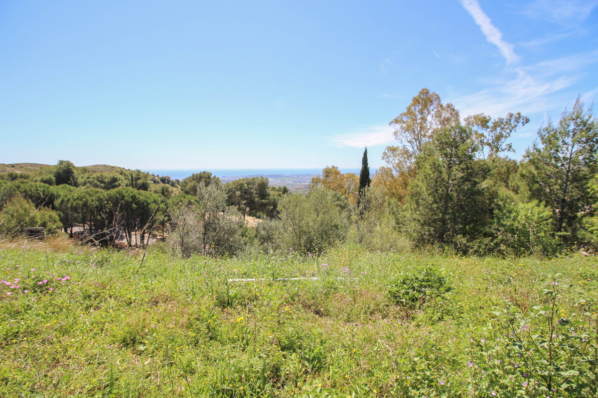 Residential Plot in Valtocado R3169234