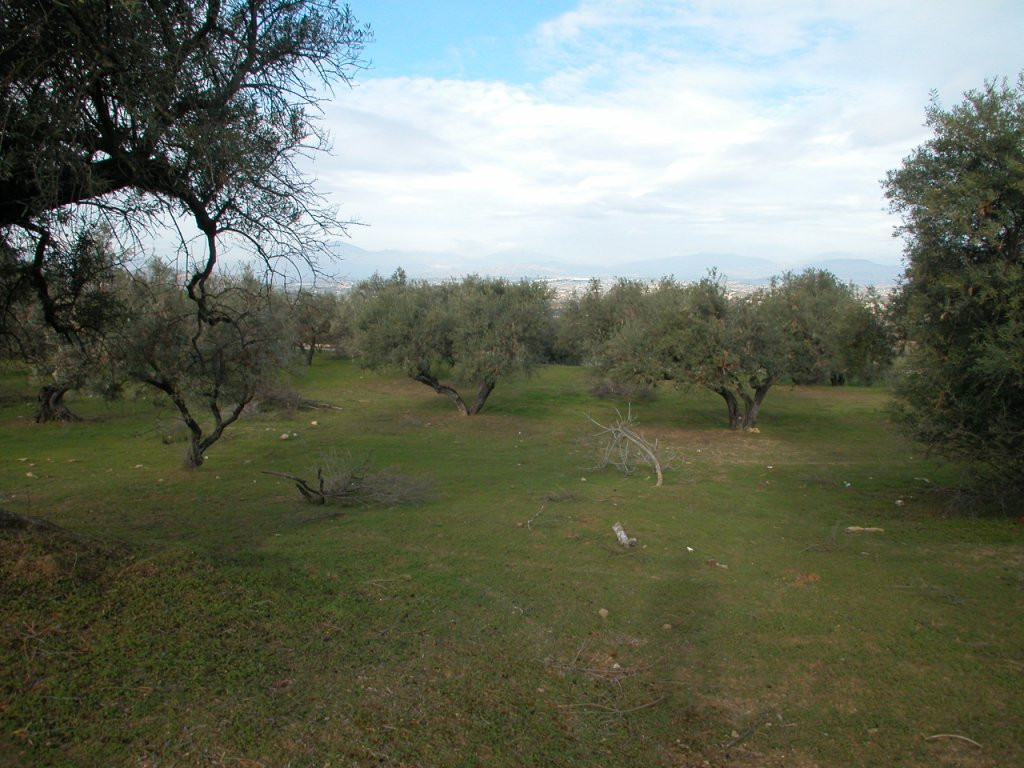 Plot in Alhaurín el Grande R2733104 10