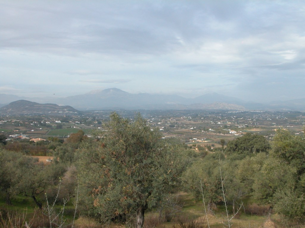 Plot in Alhaurín el Grande R2733104 3