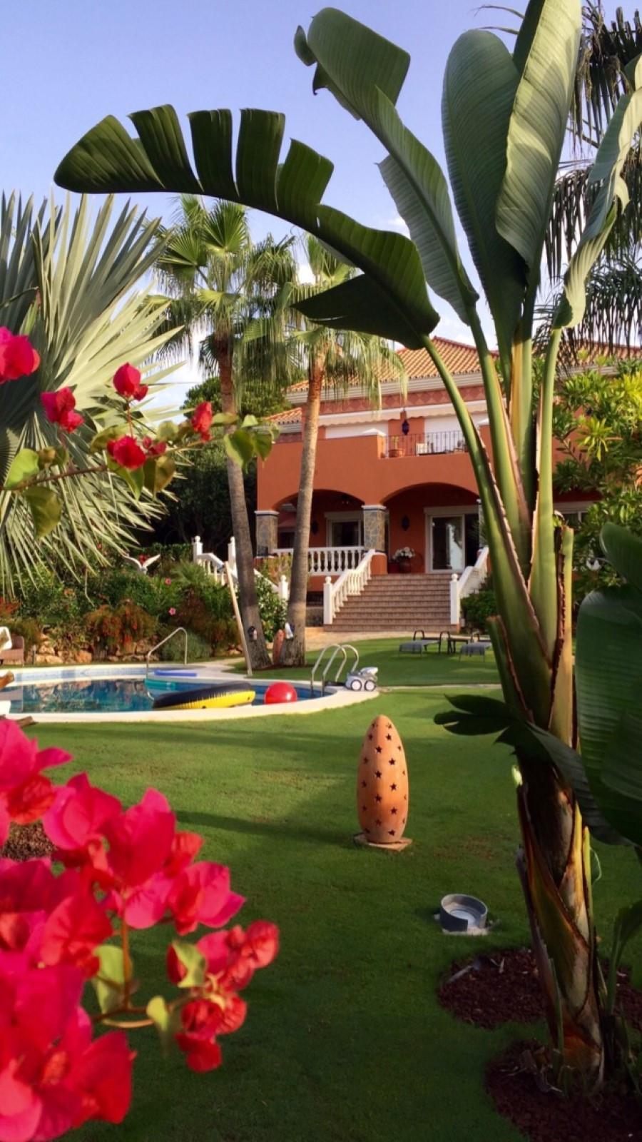 House in Calahonda R3501412 65