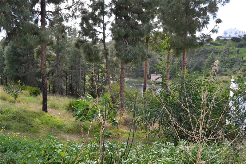Residential Plot in El Chaparral R3114772