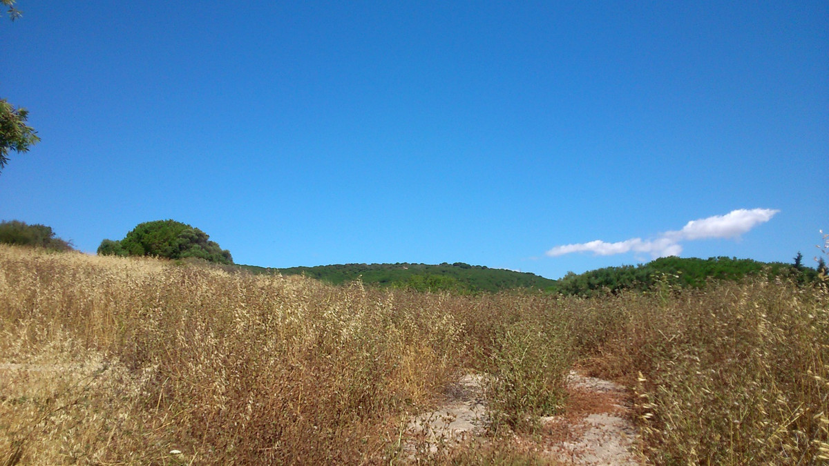 Plot in La Reserva de Sotogrande. 0.25% of suitability for building. Located in one of the most luxu, Spain