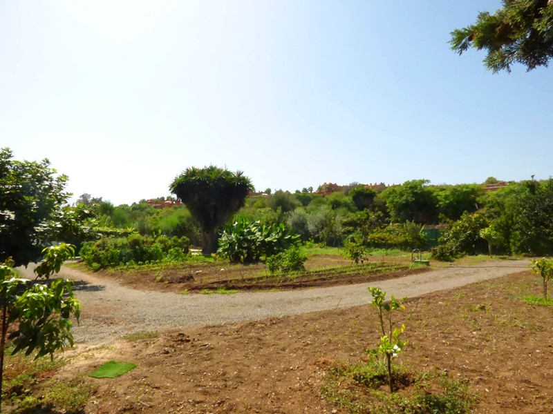 Plot in CONSOLIDATED URBAN FLOOR (PA-AN-19). With a fantastic location, in the residential area of A, Spain