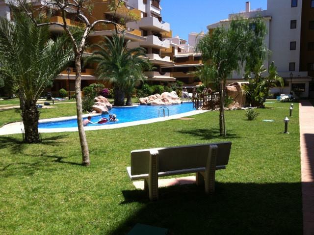 Apartment - Punta Prima