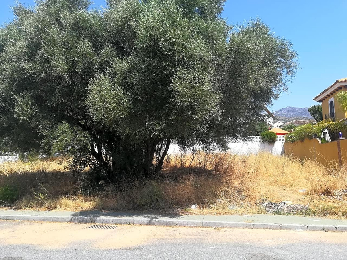 Large plot in Marbella, Malaga, in the high area, has 605 m2... Strategic and very quiet area, perfe,Spain