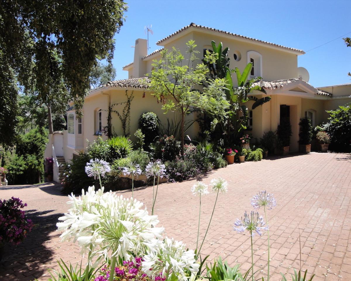 Long Term Rental in El Madronal