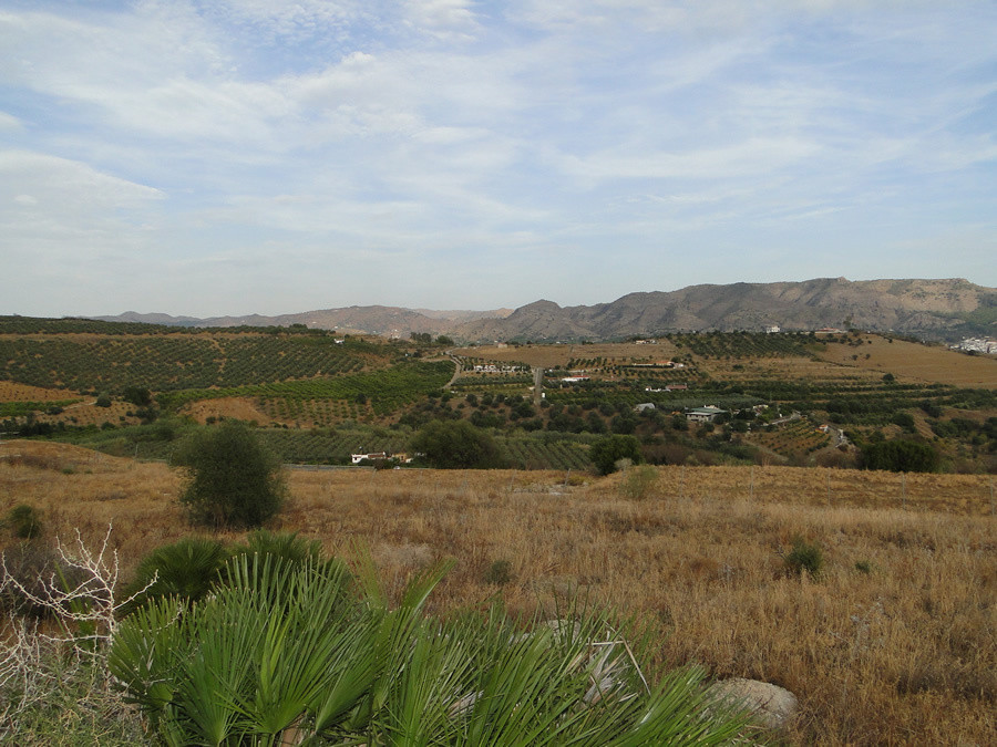 R2778362: Plot for sale in Pizarra
