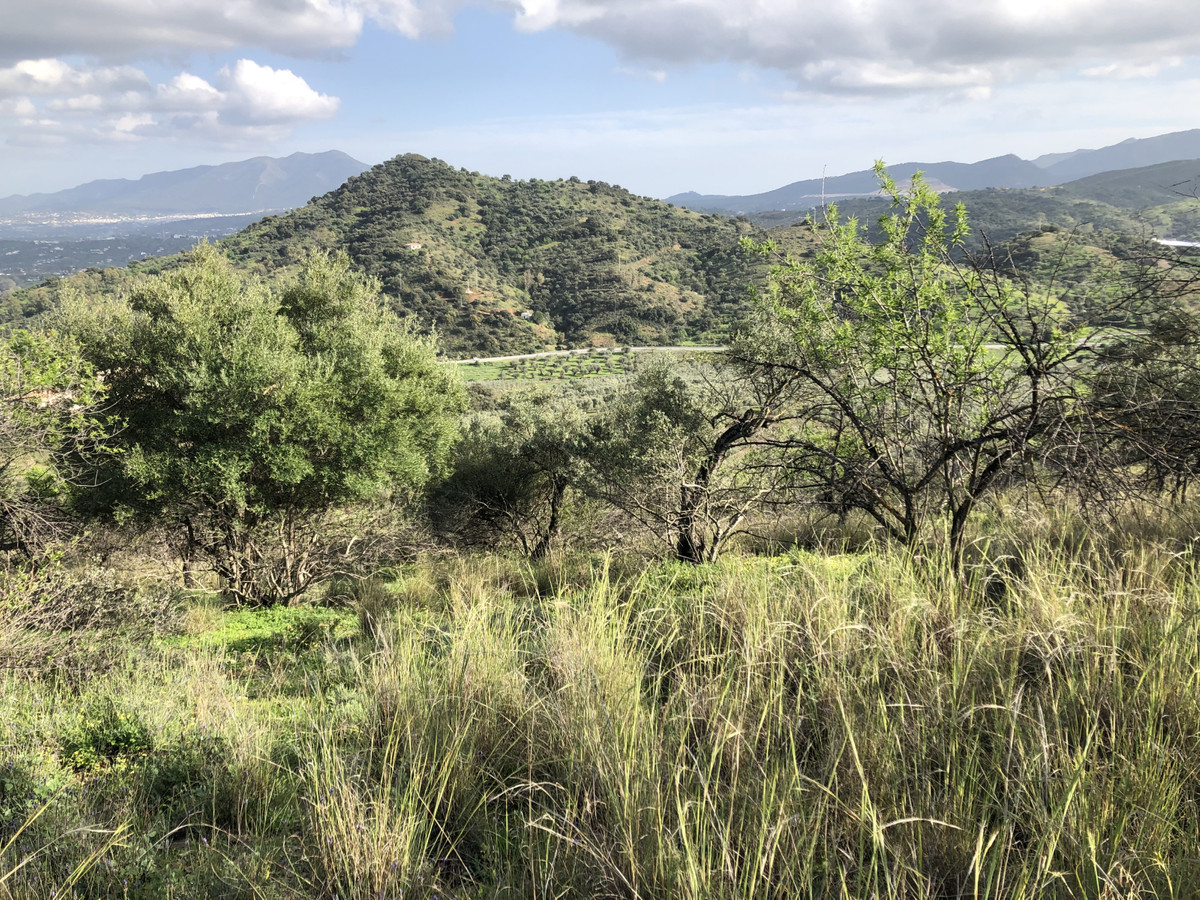 Stunning piece of rustic land with incredible views in the Coin countryside.  The land measures over,Spain