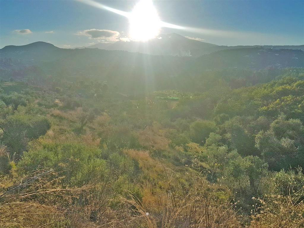 Rustic land in Coin with panoramic views, licenced well water and electricity connected. The plot is, Spain