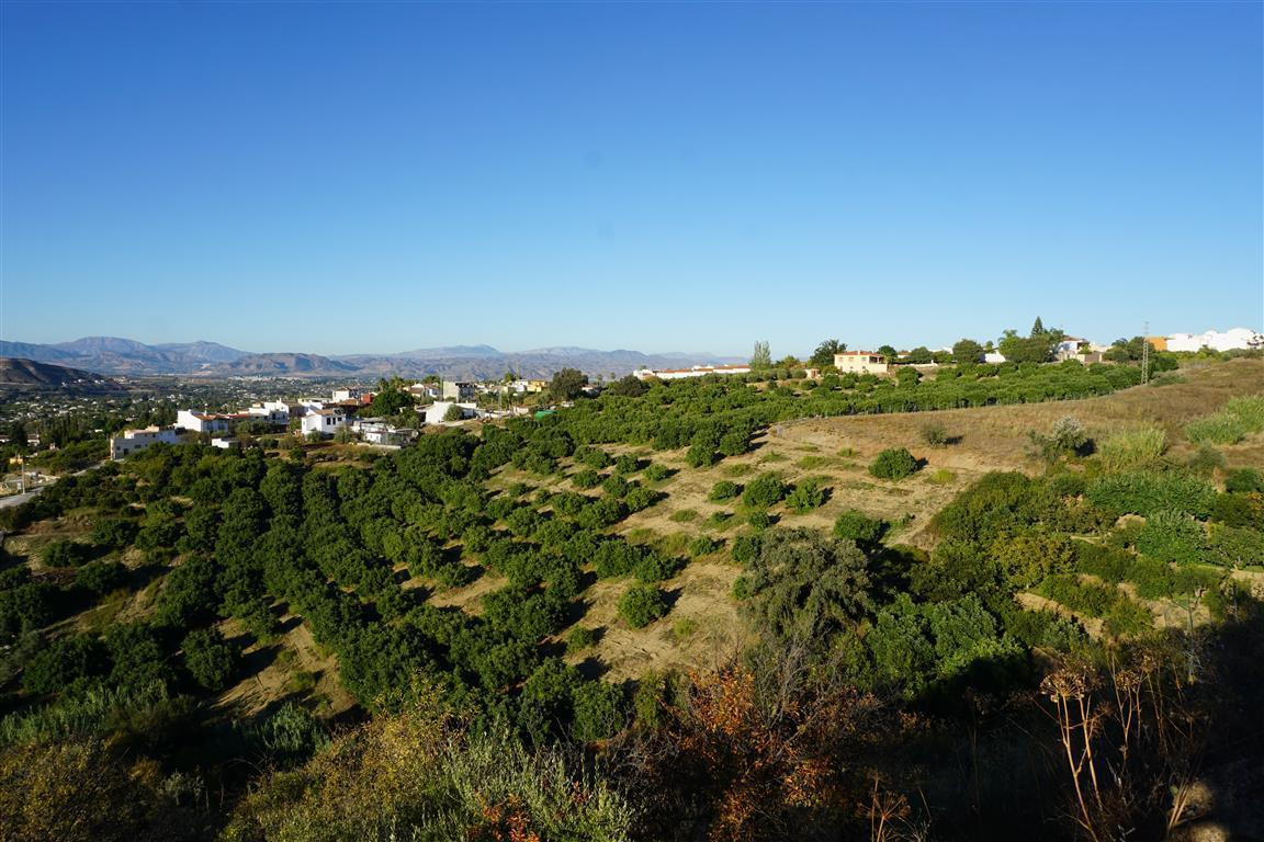Rustic land near the town of Alhaurin el Grande. It is an irrigated plot with wonderful views. It be Spain
