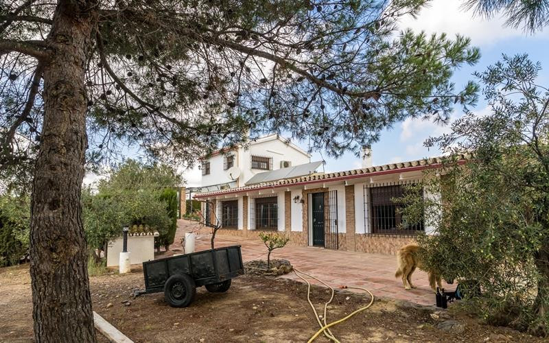 Plot – 70.000 m² all fenced. Main house 3 bedrooms 3 bathrooms Built: 300 m² Main house 100 m² of ga, Spain