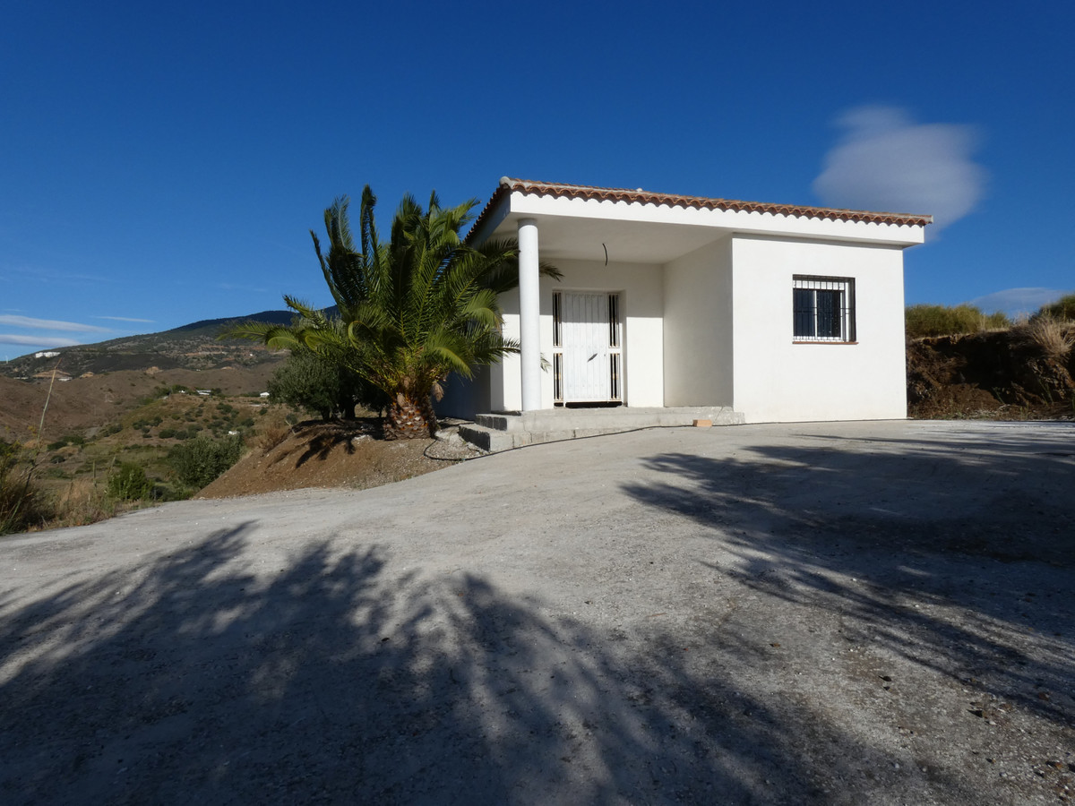 Beautiful country land comprising mainly of productive olive trees and including some 600m² of irrig, Spain