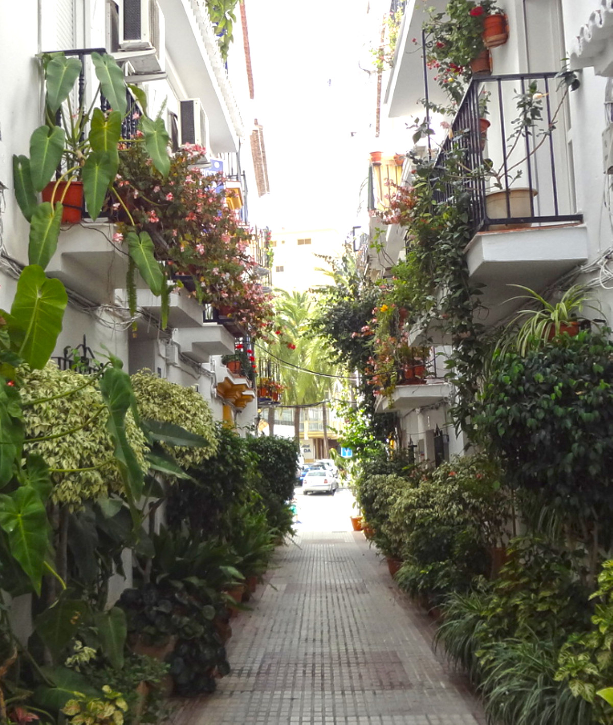 A nice Guesthouse in the old town of Marbella only 3 minutes walking to the beach.Consist of 3 floor, Spain