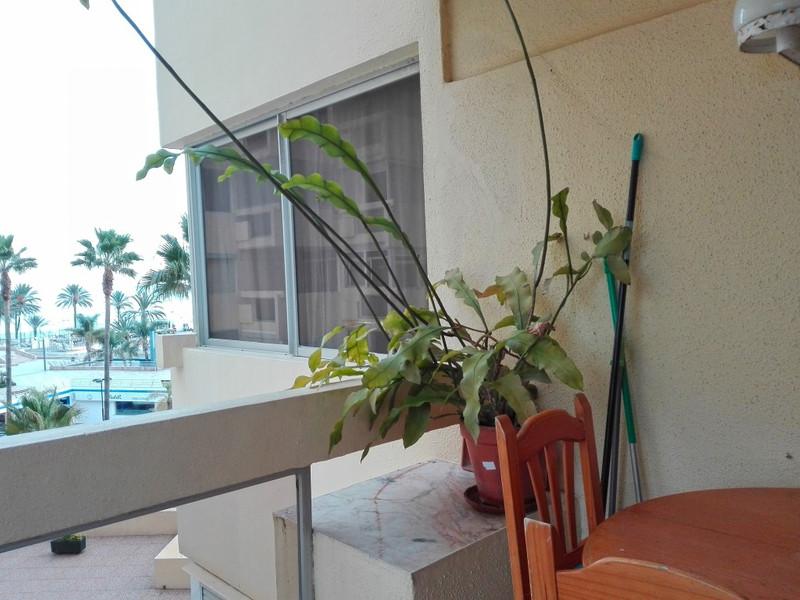 Estudio Planta Media en venta en Marbella – R3085168