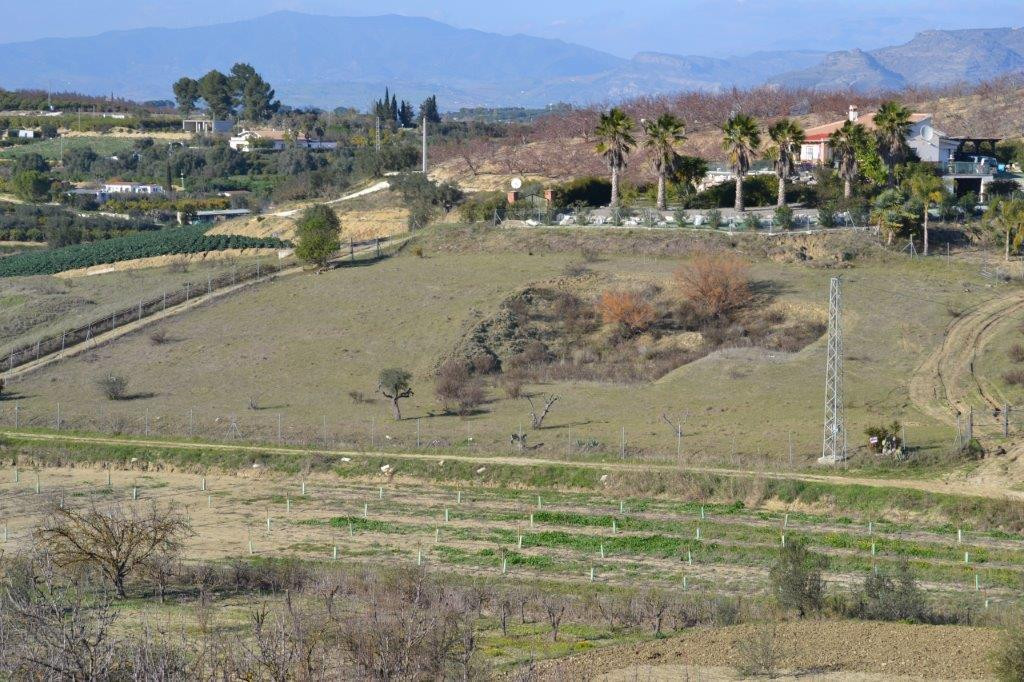 This plot is located just a 5 minute drive to the centre of Alhaurin el Grande. It has a good access, Spain
