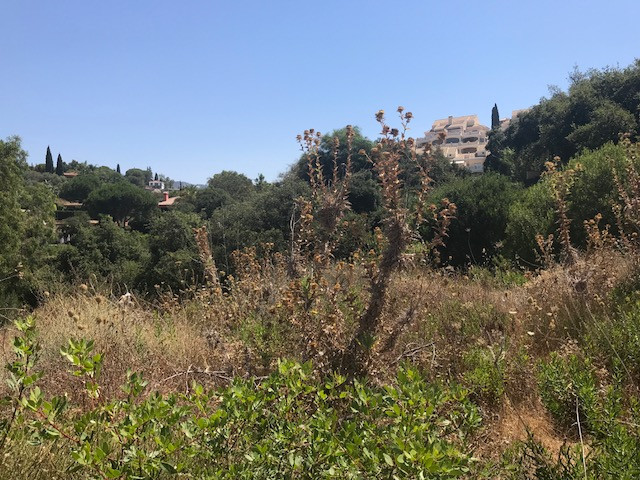 Great investment opportunity! Best price in this area. The plot is situated on the sought after area,Spain