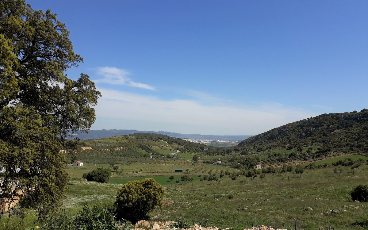 FREEHOLD - An incredible opportunity to purchase approx 950,000 ha of land / 2 semi detached houses ,Spain