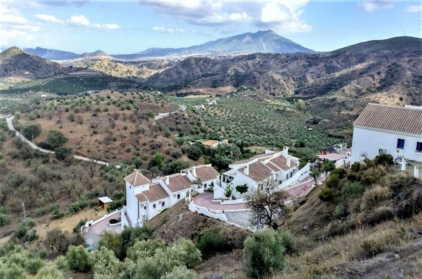Award winner, highest rating at Tripadvisor, Golden Tip at Eliza was here. And now you have the oppo,Spain