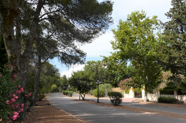 Would you like to live on this beautiful Avenue in El Paraiso  Medio?  This  fantastic plot is South, Spain