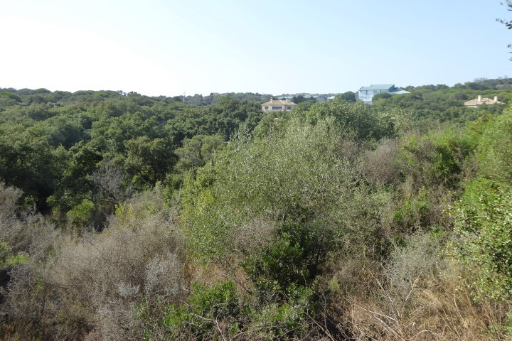 Very private west facing plot of 2,730m2 is available on Valderrama golf resort, a short distance fr,Spain