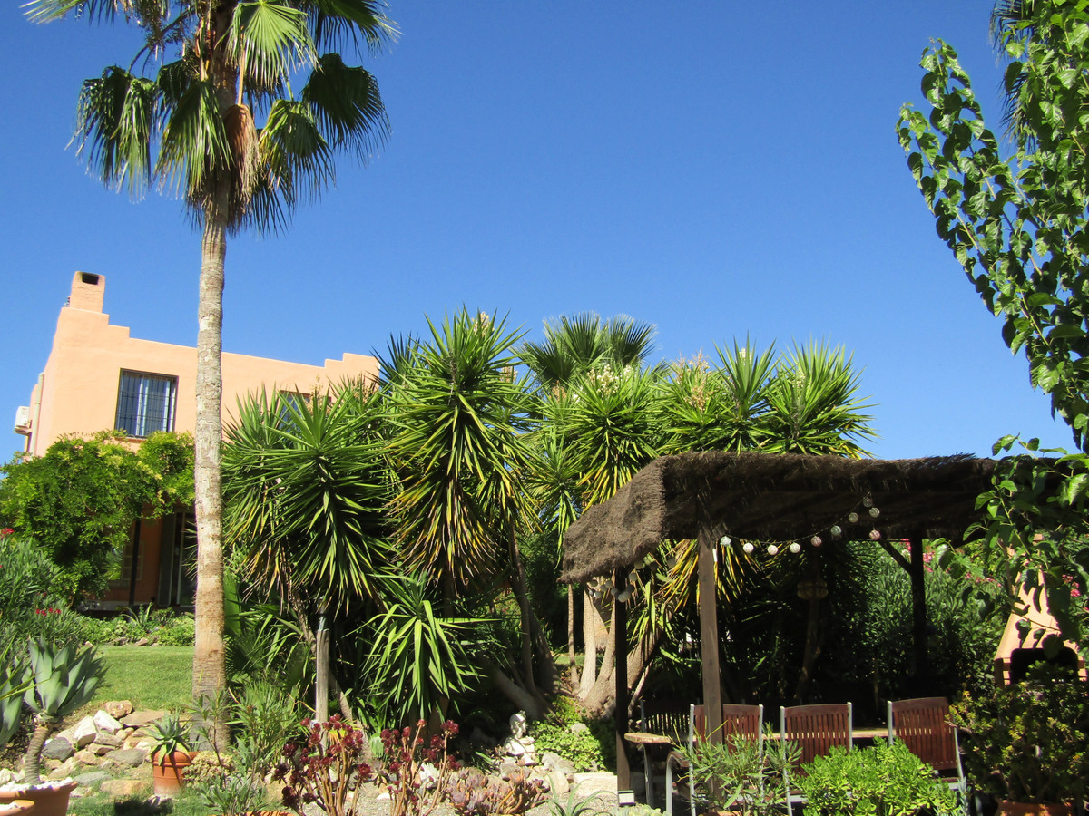Nice finca with separate guest house in the campo close to Alhaurin el Grande. The main house has a ,Spain