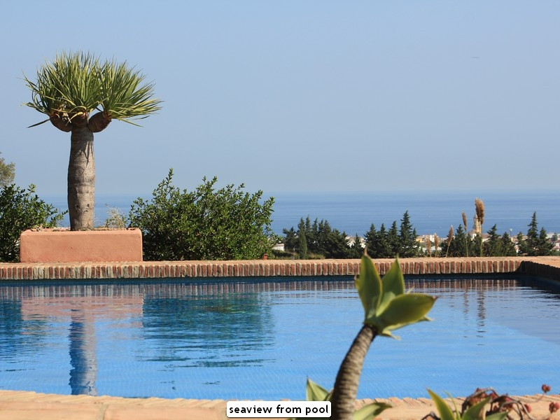 Detached Villa · Estepona
