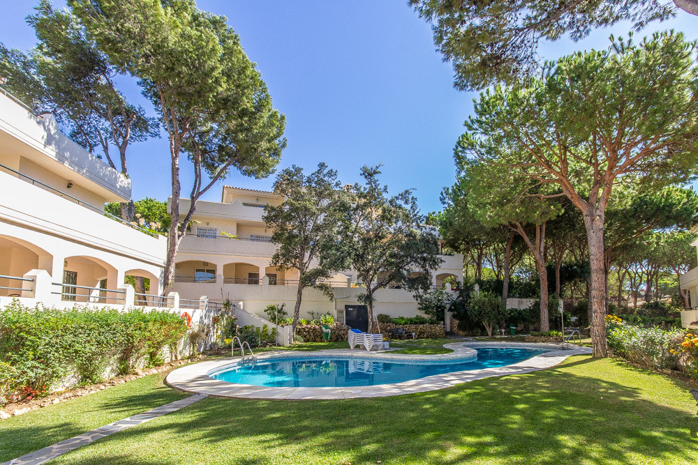 Ample ground floor apartment walking distance to the picturesque port of Cabopino. Built with a high, Spain