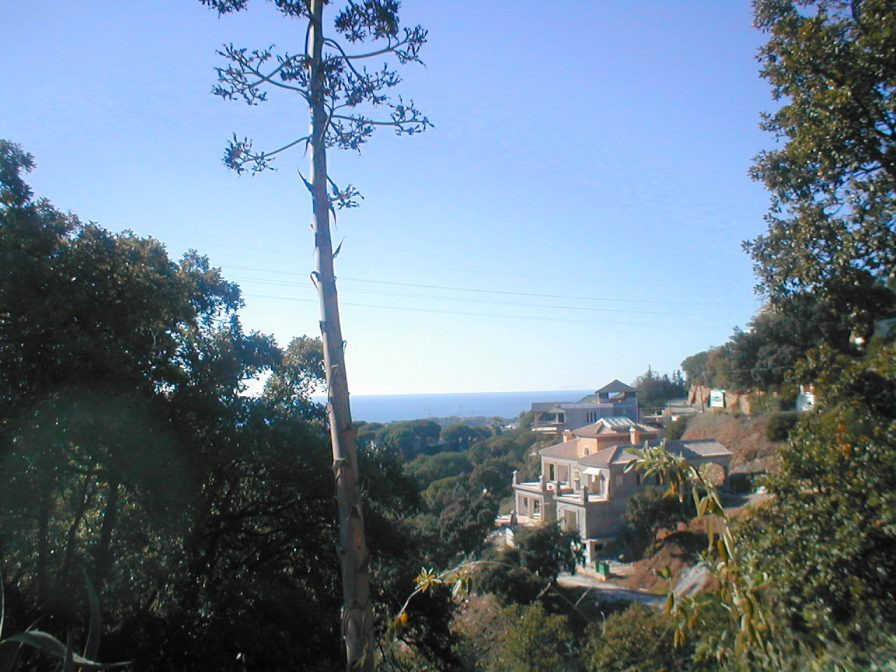 Lovely 2000m2 plot in Elviria with sea views and south west orientation. Possible to split it in to ,Spain