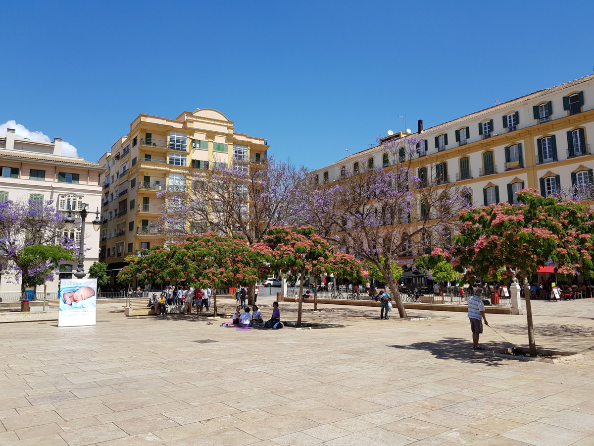 Unique luxury middle floor apartment in the best area of the historic center in Malaga, just steps a,Spain