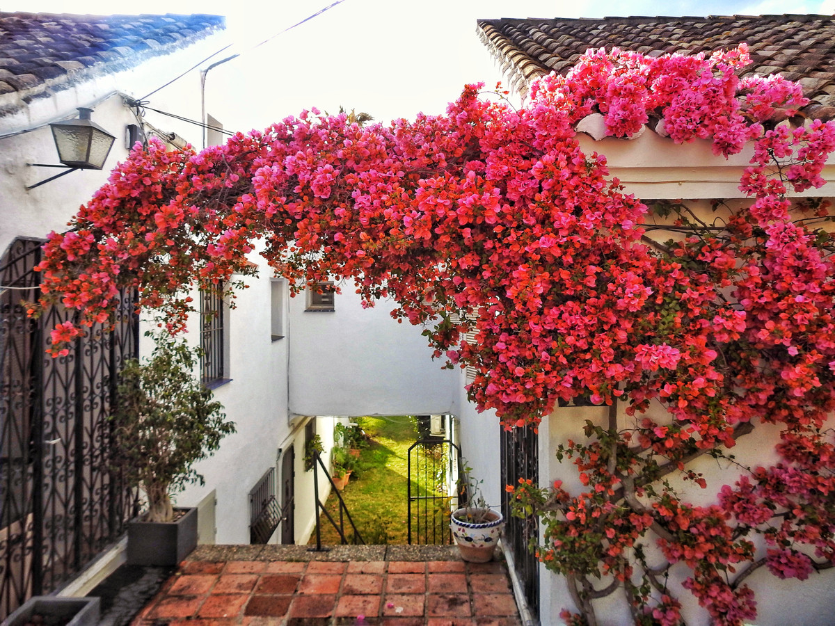 Fantastic townhouse completely renovated.  This beautiful townhouse has 2 floors, on the ground floo,Spain