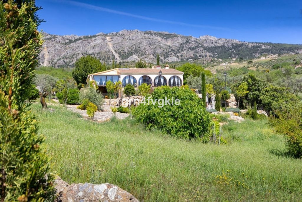 Immersed in nature and surrounded by olive, almond and various fruit and nut trees, this private and, Spain