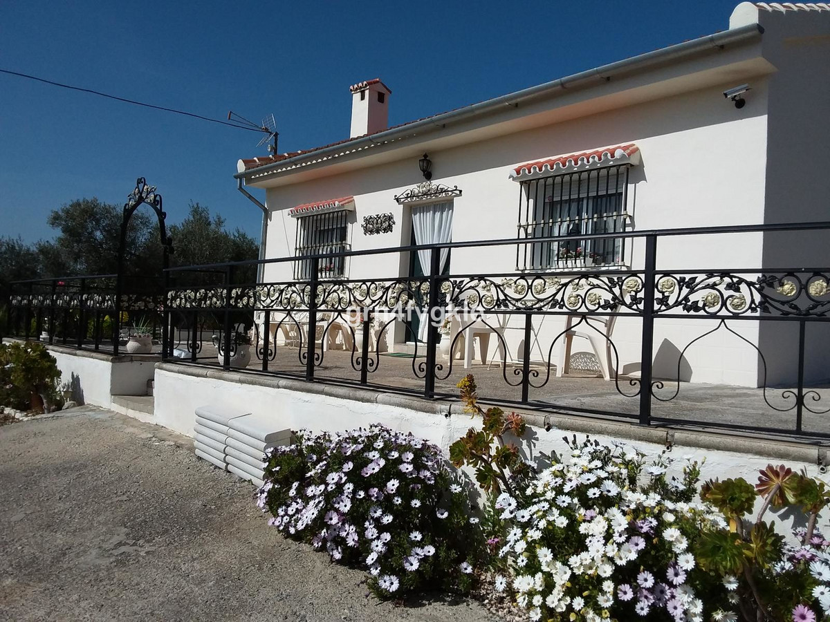 Delightful Country Bungalow. With nearly 7000 mtrs. Land with olive trees. there is ample space to e, Spain