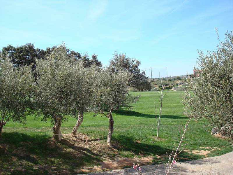 Plot for sale in Antequera