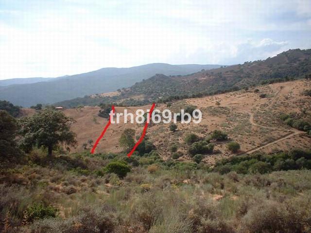 Plot for sale in Cortes de la Frontera
