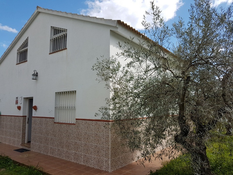 5,300 m2 fully fenced plot in the area of Cartama with two floors house with 64 m2 each (128 m2). It,Spain