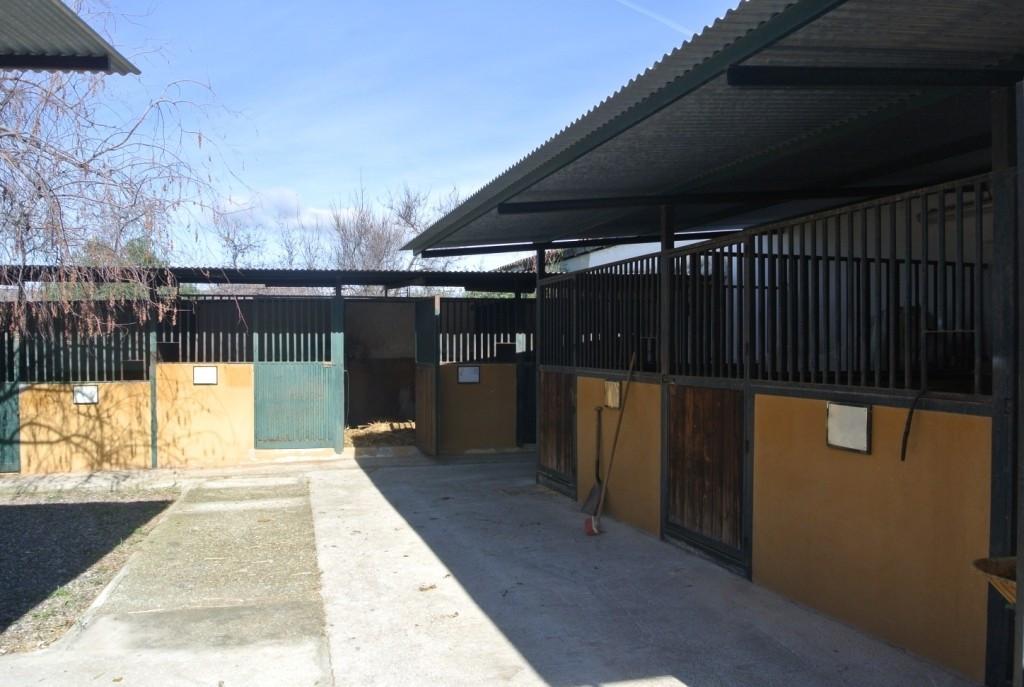 House in Alhaurín de la Torre R3349705 31