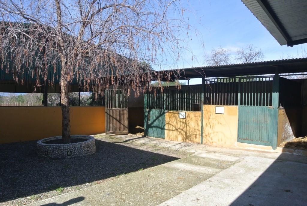 House in Alhaurín de la Torre R3349705 32