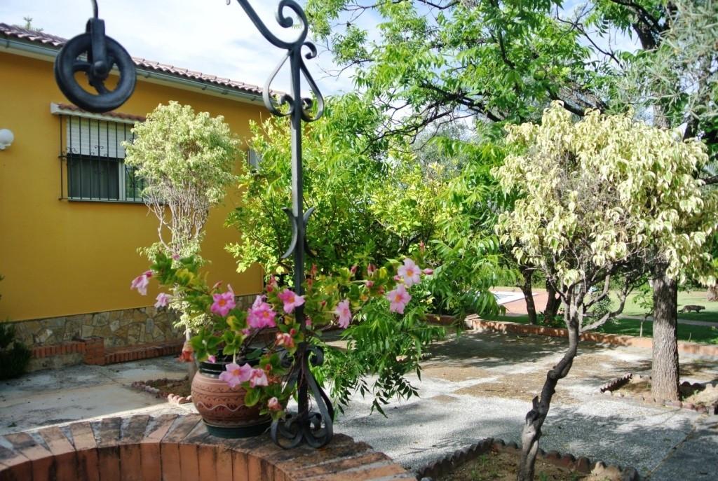 House en Alhaurín de la Torre R3433627 31
