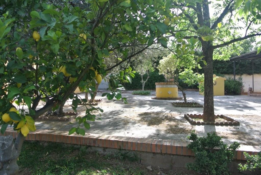 House en Alhaurín de la Torre R3433627 39