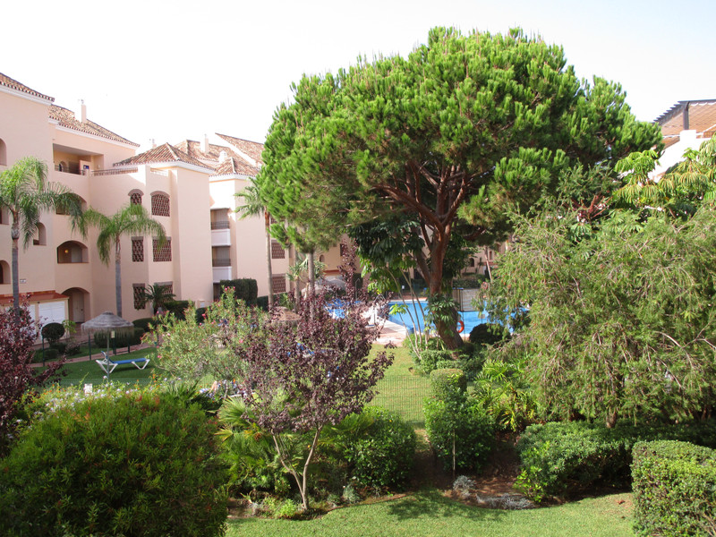 Property Elviria 8