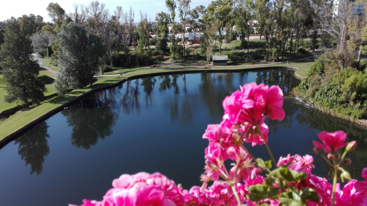 This duplex penthouse is one of the best in Guadalmina. Situated frontline golf offering ample views,Spain