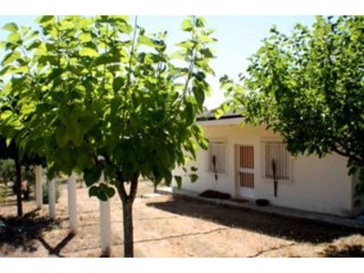 Detached Villa - Ontinyent - R2574956 - mibgroup.es