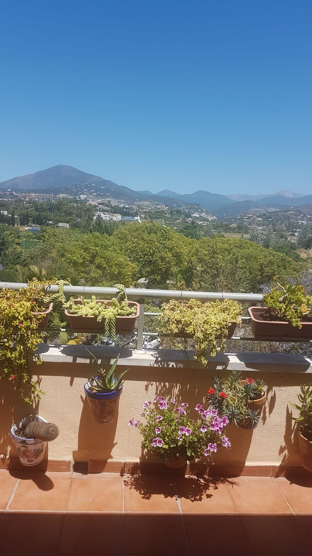 Lovely duplex apartment on the top floor located in San Pedro Town centre. This duplex has 4 bedroom,Spain