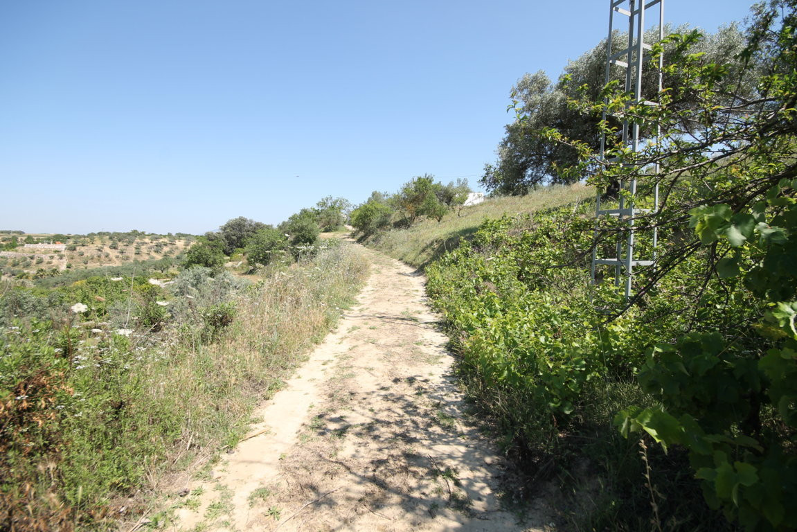 Land for sale in Alhaurin el Grande. Excellent opportunity, dry land in the municipality of Alhaurin, Spain