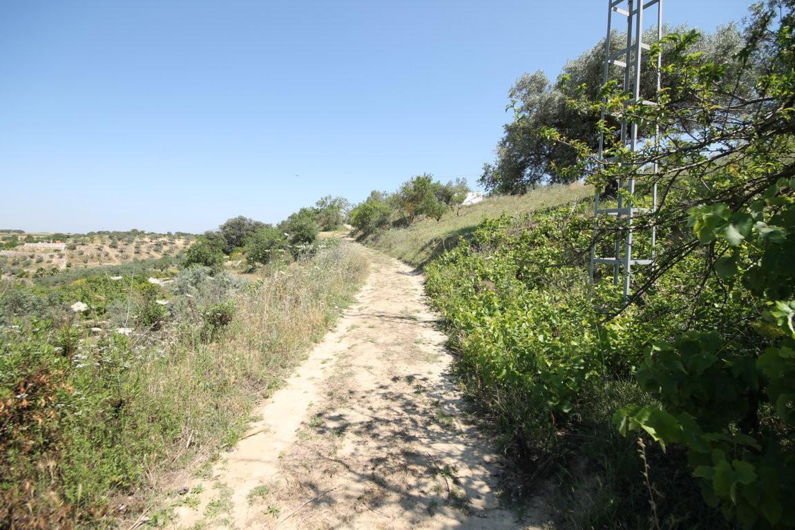 Cartama, Malaga, localHaza de los Membrillares, Alhaurin el Grande, Malaga, land  Land for sale in A,Spain