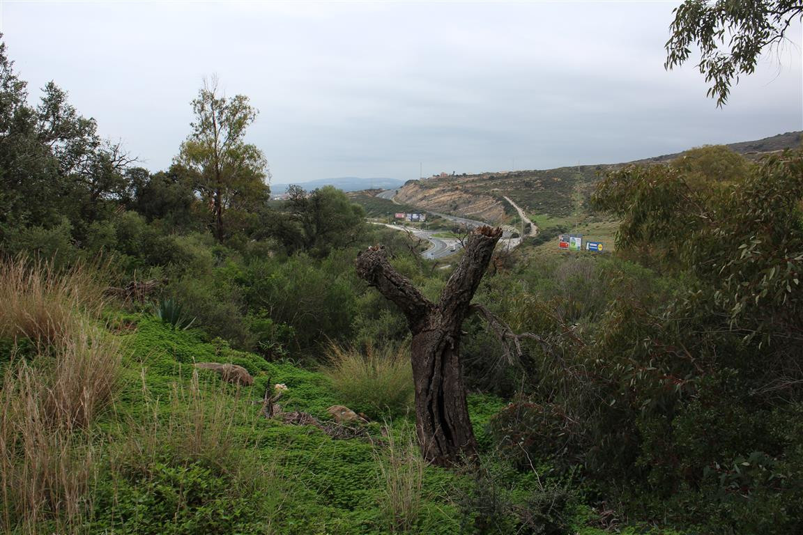 WANT TO BUILD YOUR DREAM VILLA?  Here is a plot with the top part flat and then sloping, in a small ,Spain