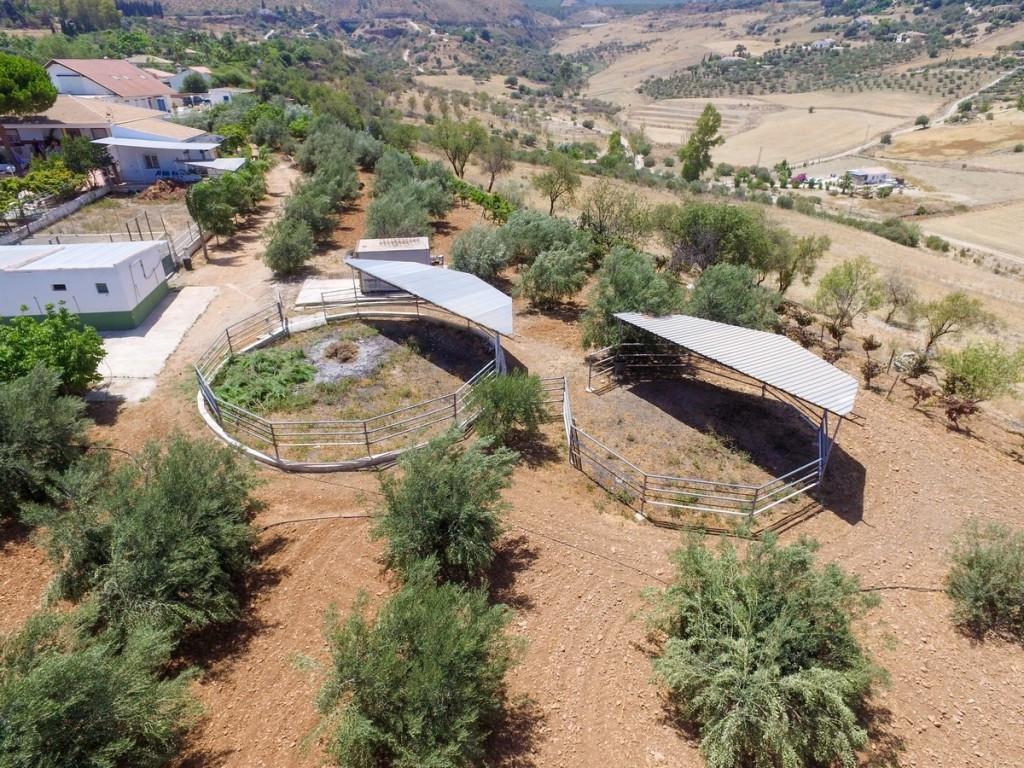 House in Alhaurín de la Torre R2712245 40