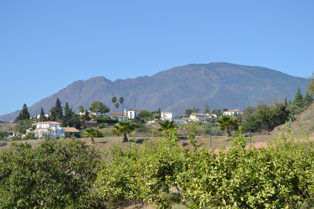 On the outskirts of Estepona - detached country finca
